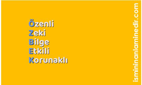 Özbek isminin anlamı